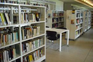 Scaffalature della nuova biblioteca