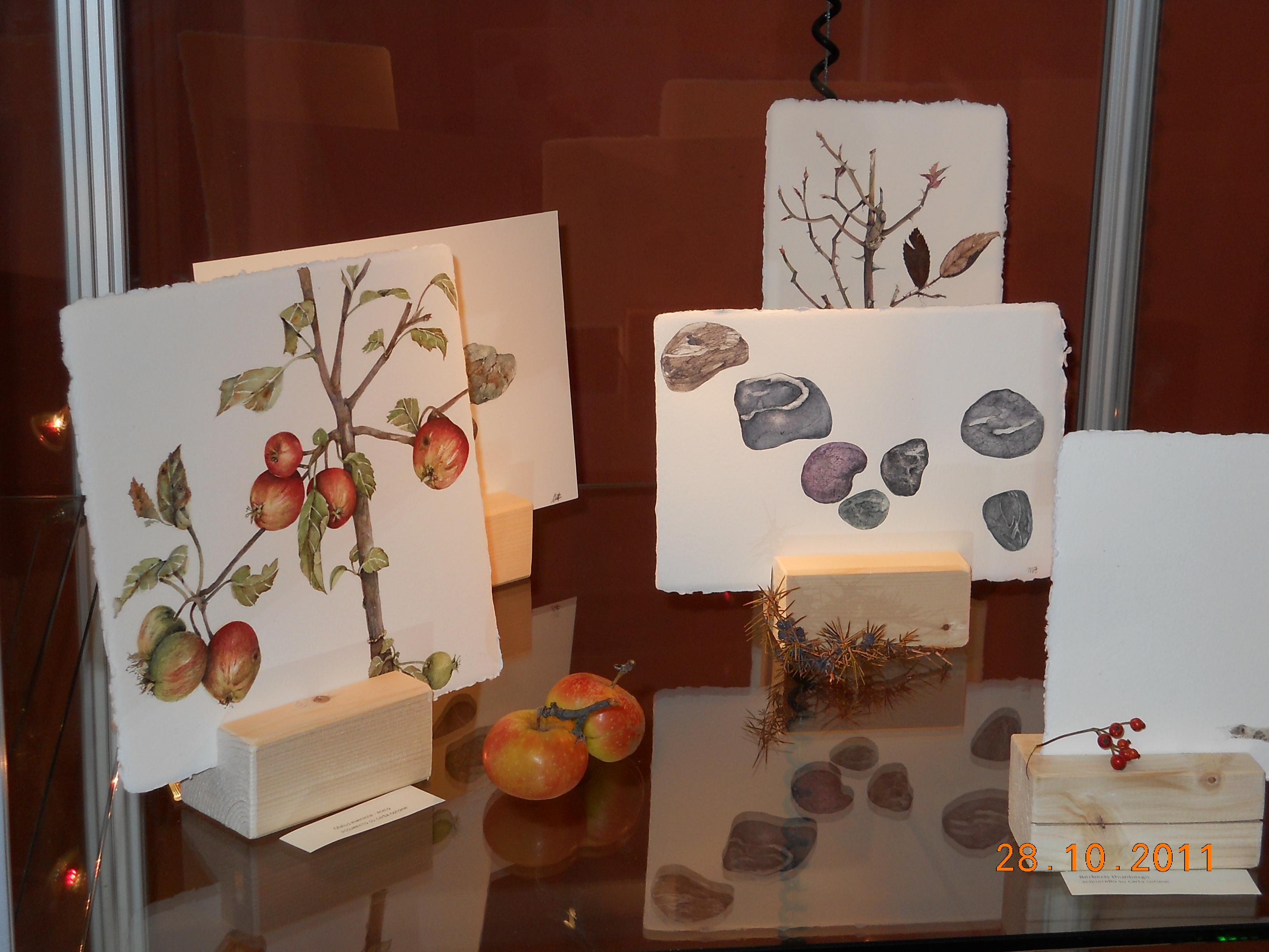 Mostra acquerello botanico Fusari